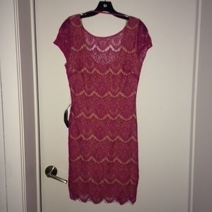Bebe lace dress - NEW - Large